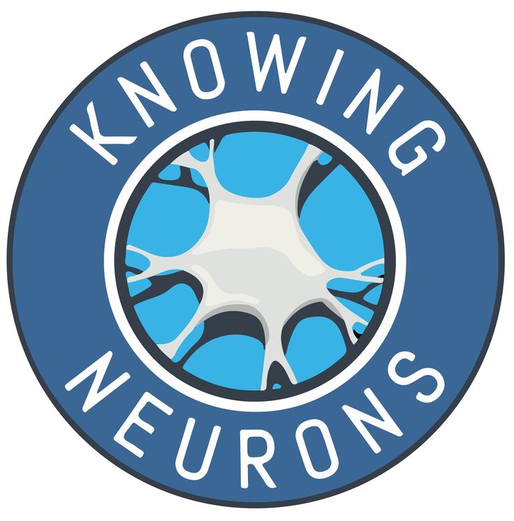 Myth or Fact? Your brain has a waste disposal system. - Knowing Neurons