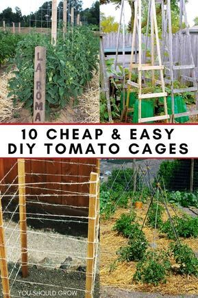 Tomato cages help tomato plants grow healthier and produce more fruit by keeping them off the ground. Tomato cages provide great support, but can get pricey to buy. Learn how to make your own with these 10 ideas. via @youshouldgrow