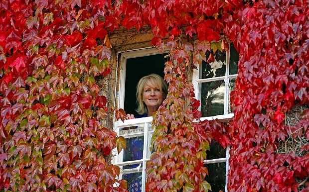Christine Mountney, Manager of Capesthorne Hall, Macclesfield, Cheshire, looks out of an office window amongst a sea of red leaves