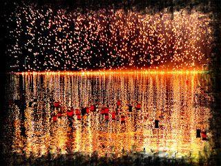Soñé que volaba: Reseña + Proyecto delirante: Lluvia de fuego, de L...