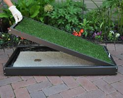 Dogs Patio And Litter Box On Pinterest