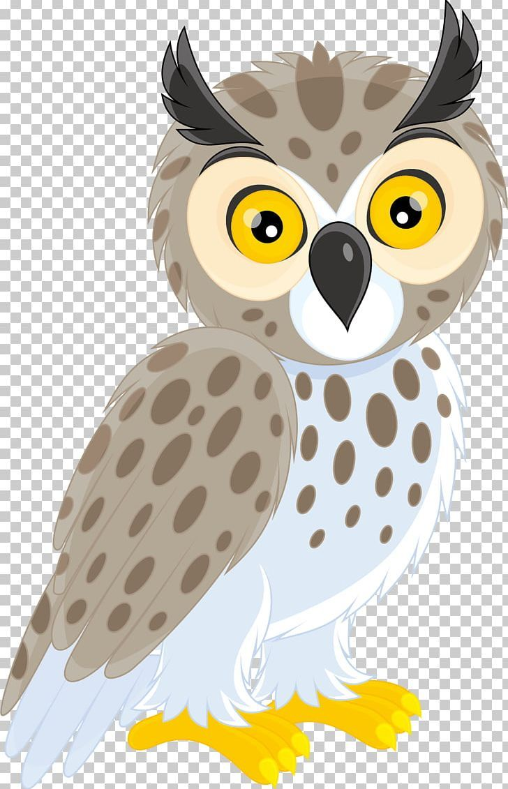 Long Eared Owl Short Eared Owl Png Animals Barn Owl Beak Bird Bird Of Prey Owl Vector Owl Posters Owl Png