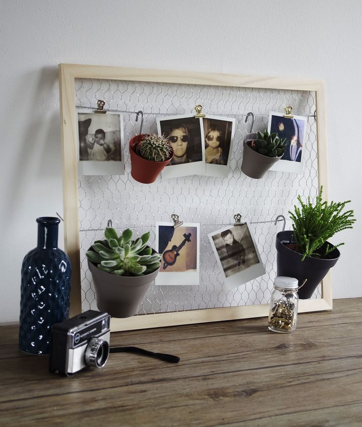 diy mon p le m le plantes et polaro ds concours diy pinterest polaroid p le m le et. Black Bedroom Furniture Sets. Home Design Ideas