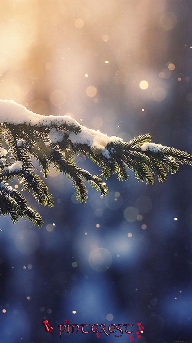 Wallpaper Macbook Christmas Desktop Backgrounds Nature Photo Sky In 2020 Snow Wallpa Wallpaper Iphone Christmas Winter Wallpaper Iphone Wallpaper Winter Best of snowy christmas wallpaper for