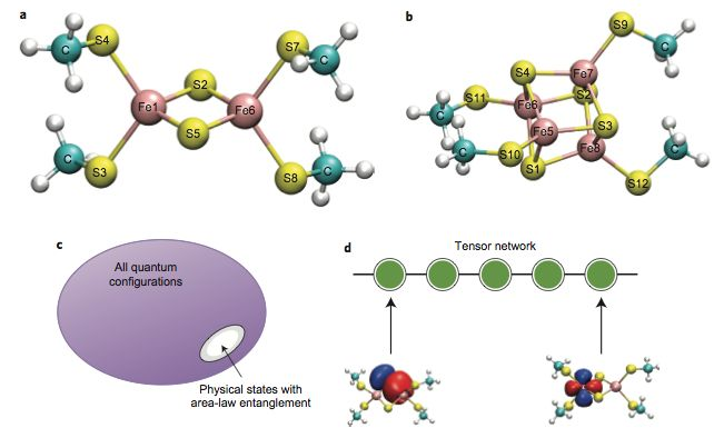 Quantum mechanical calculations reveal the hidden states of enzyme active sites | Princeton University Department of Chemistry