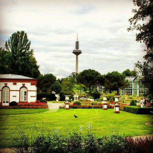 Best Funkturm Ginnheimer Spargel Palmengarten Frankfurt am Main Hessen Germany