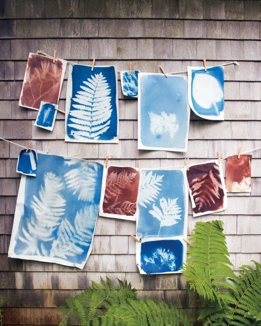 Make gorgeous sun-prints with this easy tutorial. #DIY