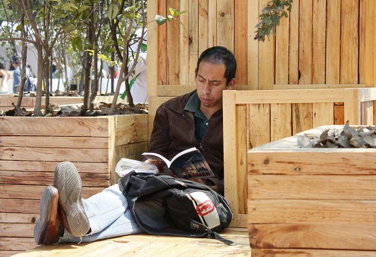 Jueves, 17 de Octubre 2013. Cientos de ciudadanos leen en los módulos de la XII Feria Internacional del Libro del Zócalo en la que participan 208 escritores y 350 sellos literarios distribuidos en 13 carpas ademas de 3 foros de actividades.  Foto:Mayra Morales/Secretaria de Cultura