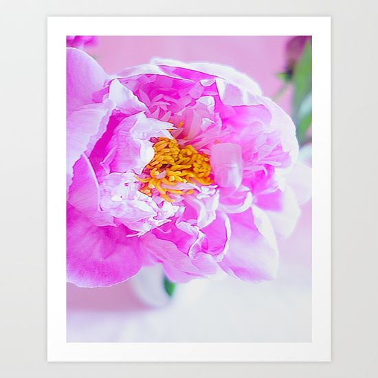 Beautiful bright dramatic florals, pink peonies!