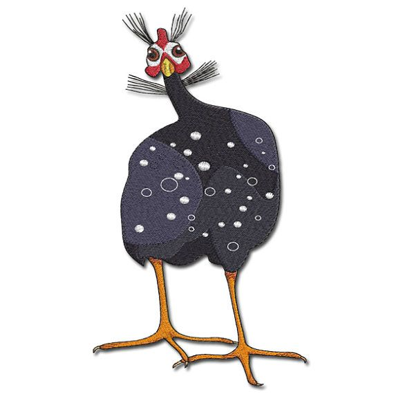 Best skinny guinea images on pinterest fowl