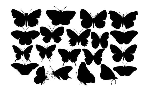 Butterfly Silhouette Butterfly Clipart Black Butterflies Insect Silhouette Butterfly Svg Butte Butterfly Silhouette Silhouette Butterfly Butterfly Clipart
