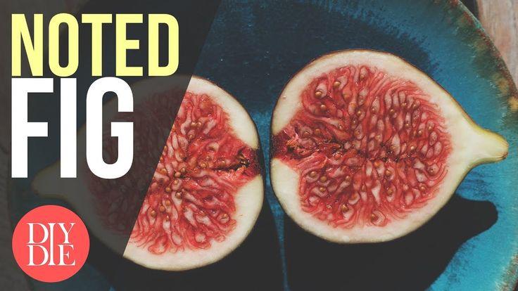 Noted: Ep. 27 - Fig (DIY E-liquid Flavor Reviews)