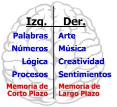 Resultado de imagen para imagenes del cerebro izquierdo y derecho
