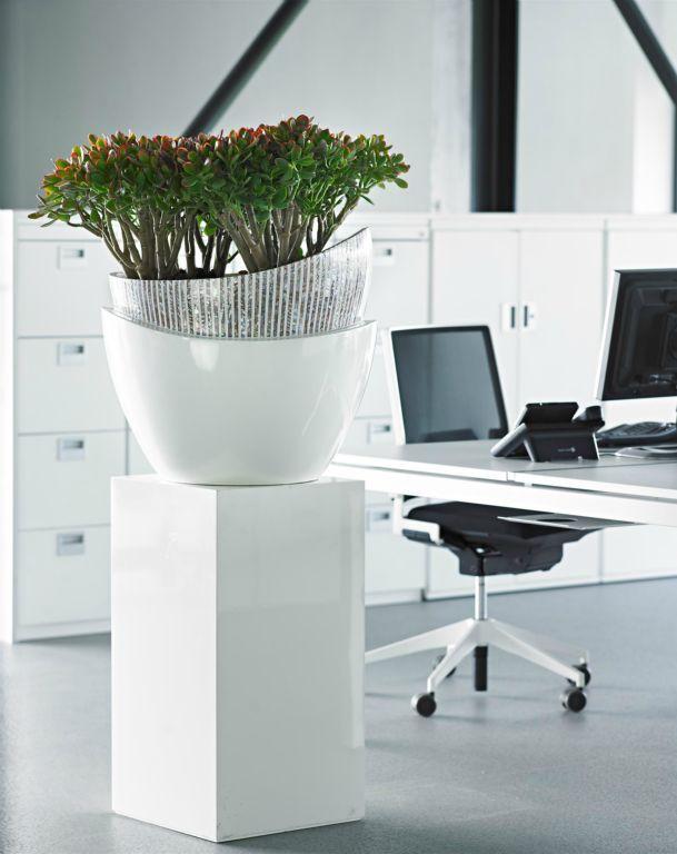 25 beste idee n over kantoorplanten op pinterest bureau plant werkplek inrichten en werktafel - Kantoor decoratie ideeen ...