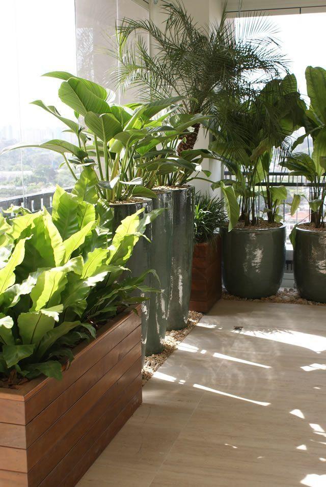 Conheça nossa seleção com 50 fotos de vasos vietnamitas inspiradores. Mude sua decoração com nossas dicas.