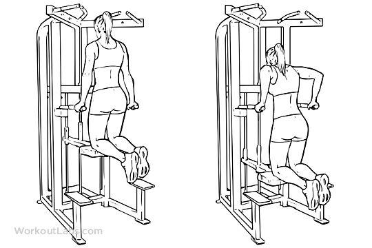 De beste apparaten en oefeningen voor sterke armen en borst | Fitgirlcode (NL) | Bloglovin'