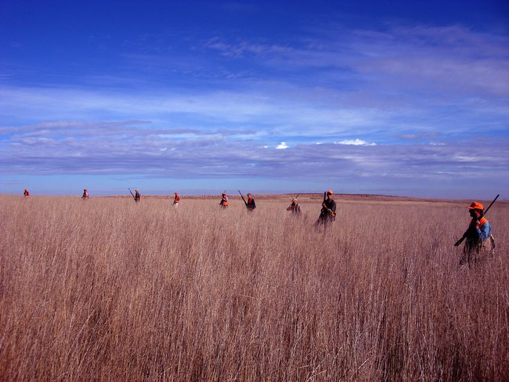 Hunting: South Dakota.There are tons of great hunting areas around Rapid City – and a huge variety of game. From coyotes, prairie dogs, pheasants to mule deer and elk, hunters will never be bored.