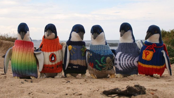 Australia's Oldest Man, Who Knitted Jumpers For Penguins, Has Died At 110 - National Geographic Channel