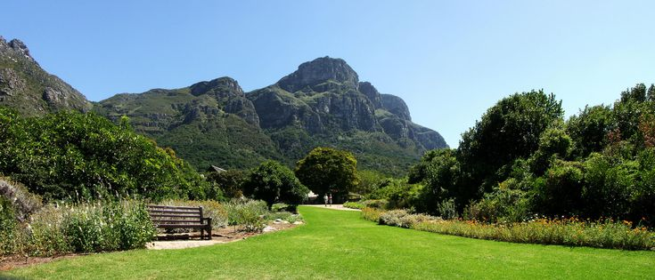 View of Table Mountain from Kirstenbosch Botanical Gardens, Cape Town, South Africa