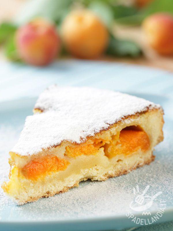 Se amate i dolci alla frutta farciti con i freschi prodotti della natura cimentatevi nella preparazione di questa Torta alle albicocche e pesche gialle!