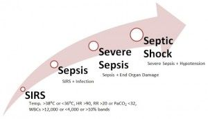 Systemic Inflammatory Response Syndrome Sepsis Pathyway