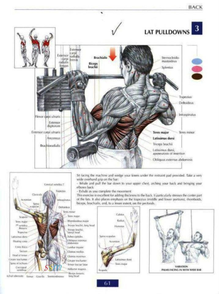 25 best FITNESS TRAINING images by OLIVIER RND on Pinterest ...