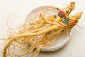 http://www.jagonyaobatherbal.com/2016/02/17/fakta-tentang-ginseng-amerika/ Dalam pengobatan tradisional, ginseng termasuk tanaman herbal yang sudah sangat terkenal karena manfaat dan khasiatnya yang nyata bagi kesehatan. Ginseng banyak ditemukan di Amerika Utara dan Asia Timur seperti Korea. Ada dua jenis utama ginseng, yaitu ginseng Amerika ( Panax quinquefolius ) dan ginseng Korea atau Asia ( Panax ginseng ). Kedua jenis ginseng tersebut memiliki khasiat yang berbeda.