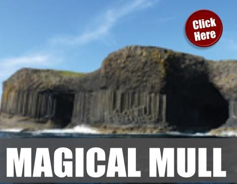 Magical Mull: Semi-Escorted Tour of Scotland: Enjoy 2 independent days in Edinburgh (pre/post) with 4 days bring you the Magic of Mull! Spending three nights in the prettiest harbor town, Tobermory. A fantastic new itinerary with Mull, Iona and the West Highlands. http://www.celtictours.com/stw/STWProduct.aspx?Theme=CELTIC&ProductCode=UK-4DMULL