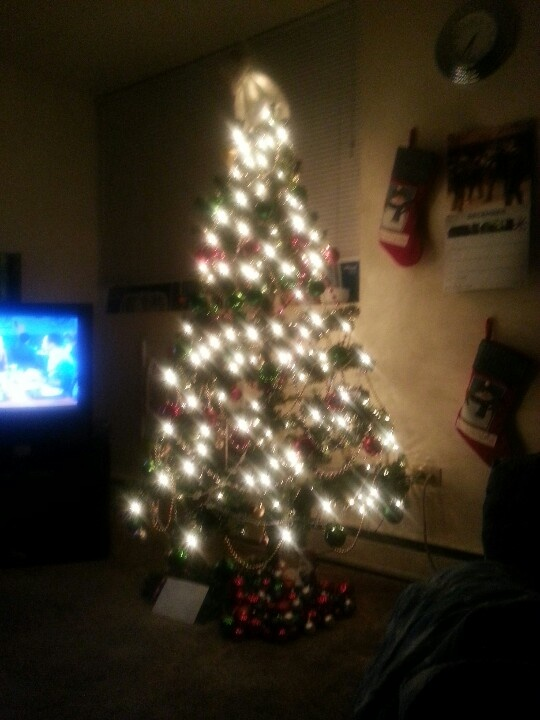 Big Bang Theory  in the back, redecorated tree in the dark