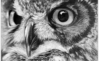 One of the fun games we have in the Market is test folks about whether this artist's work is photographic or pencil! Very few guess that Kevin Johnson is a pencil artist. He's self-taught, and world class. ~ Salish Sea Market