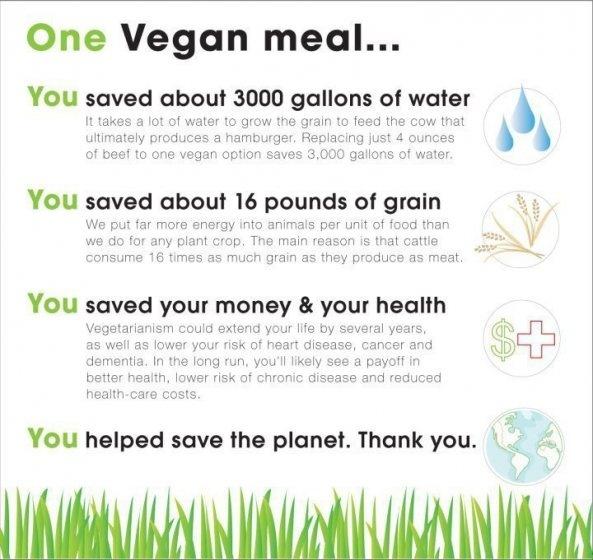 go veganEating Habits, Animal Right, Diet, Food, Make A Difference, Govegan, Go Vegan, Vegan Meals, Vegan Lifestyle