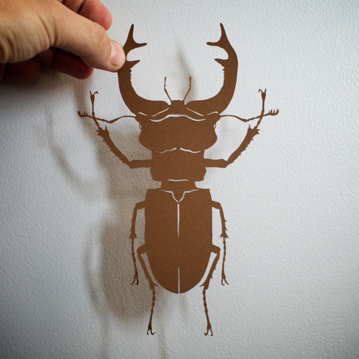 Stag Beetle, hand-cut paper by ChNNLampshade on Etsy