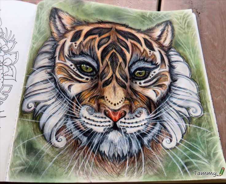 African Tiger. Magical Jungle by Johanna Basford.