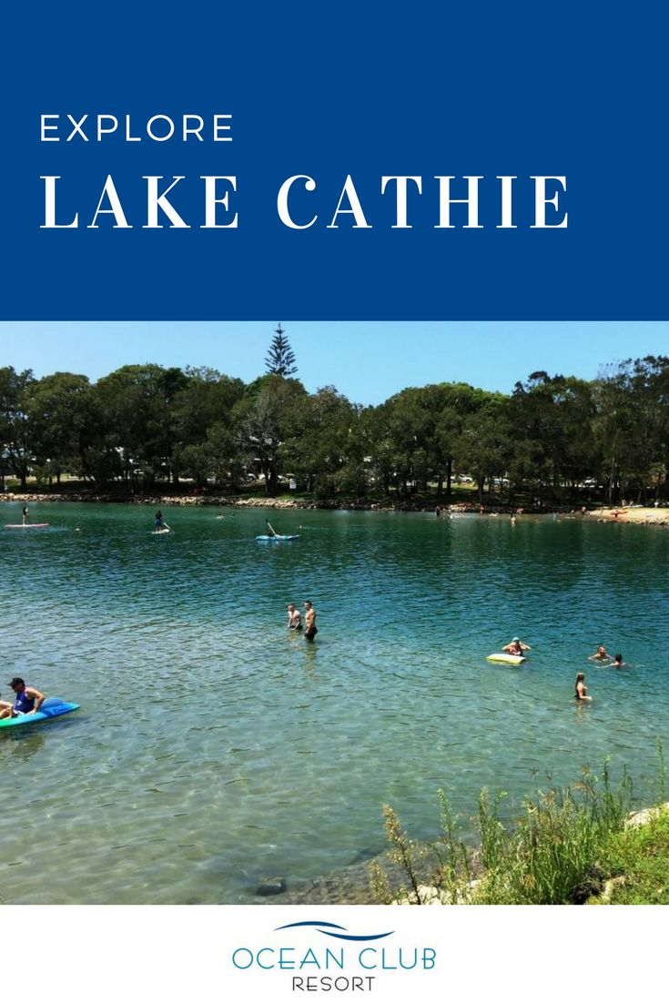 Spring has arrived and the weather is warming! It's time to get out and explore Lake Cathie! Why not even go for a swim?   |   #atOCR #OceanClubNSW #OceanClubResort #PortMacquarie #Retirement #RetiredLiving #MidNorthCoast #Australia #LuxuryRetirement #AffordableRetirement #Over50 #GatedCommunity #SeaChange #Downsize #Property #RetirementLiving #ResortLiving #CommunityLiving #LakeCathie #Lake