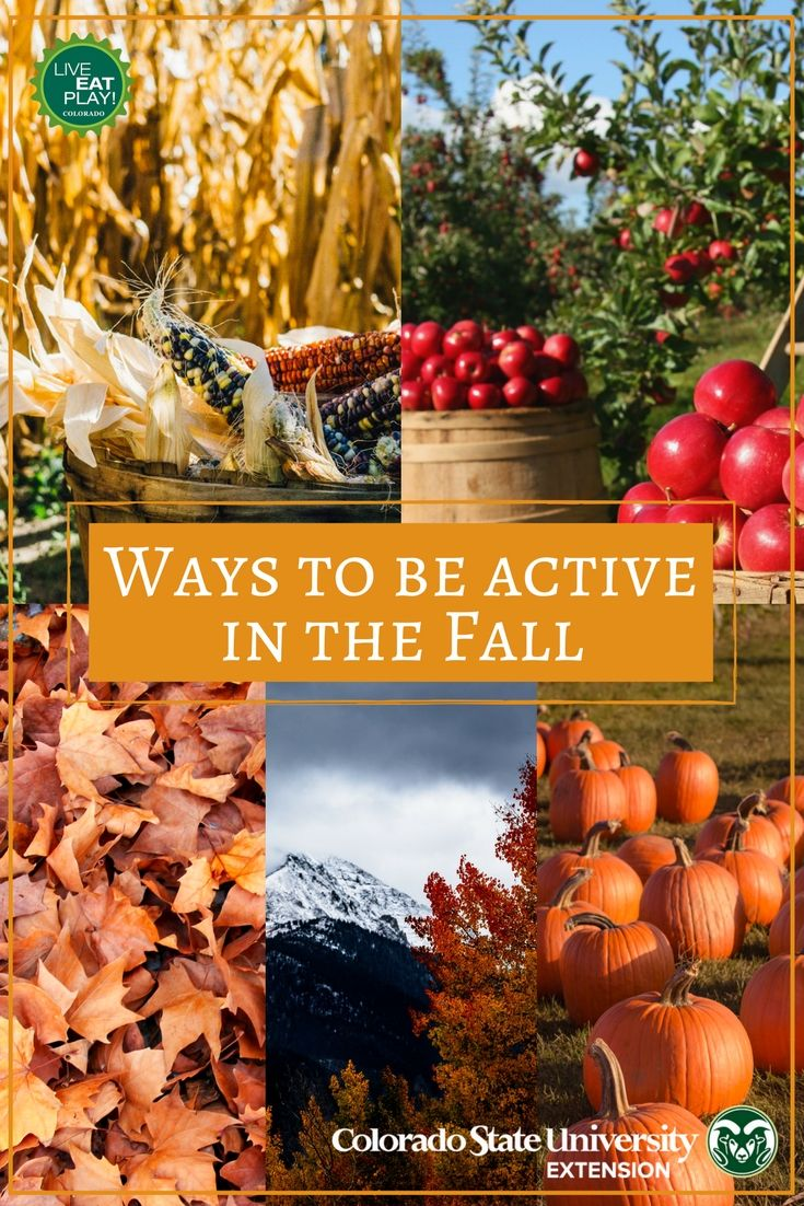 There are so many ways to be active in the fall! You can rake leaves, go apple picking, play in a pumpkin patch, trek through a corn maze, or see the fall colors on a hike!