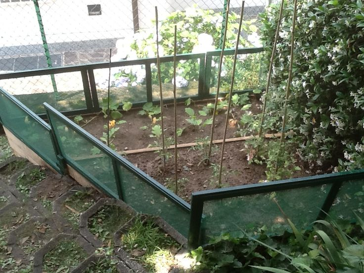 17 migliori idee su recinzione da giardino su pinterest for Idee recinzione giardino
