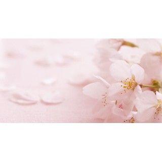 【hkyolouptomeme】さんのInstagramをピンしています。 《Inner child healing🌸☄️ 涙と鼻水止まらない笑  #innerchild #healing #spiritual #me #cherryblossom #インナーチャイルド #ヒーリング #桜》