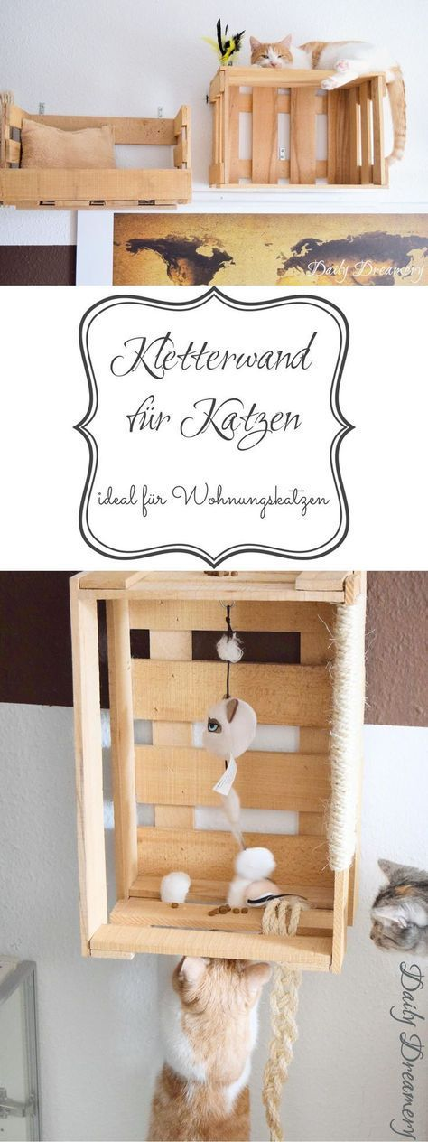 [Enthält Werbung]  Keep your apartment cats right: DIY climbing wall from old wine boxes
