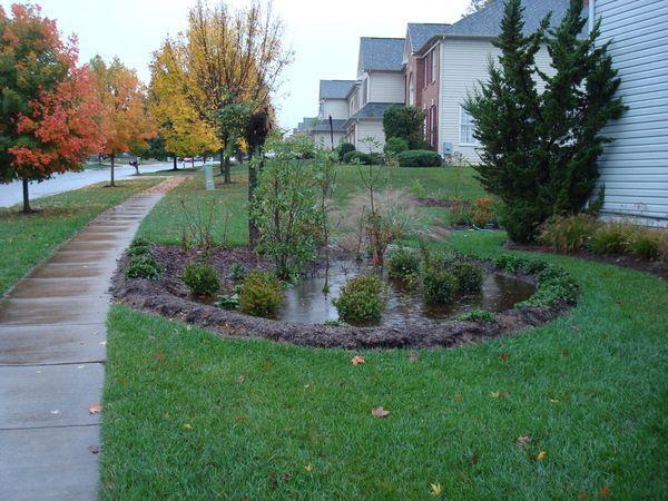 24 Best Images About Garden Rain On Pinterest Raised