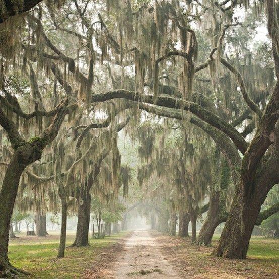 Charleston, South Carolina