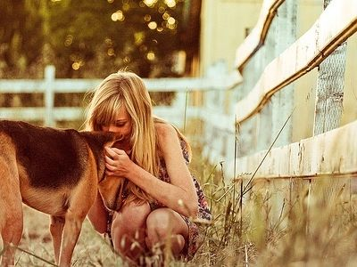 8 Great Movies for Dog Lovers …    Dog movies span the gamut of film genre with just the one thing in common – they all feature a loveable furry four legged friend or two. …