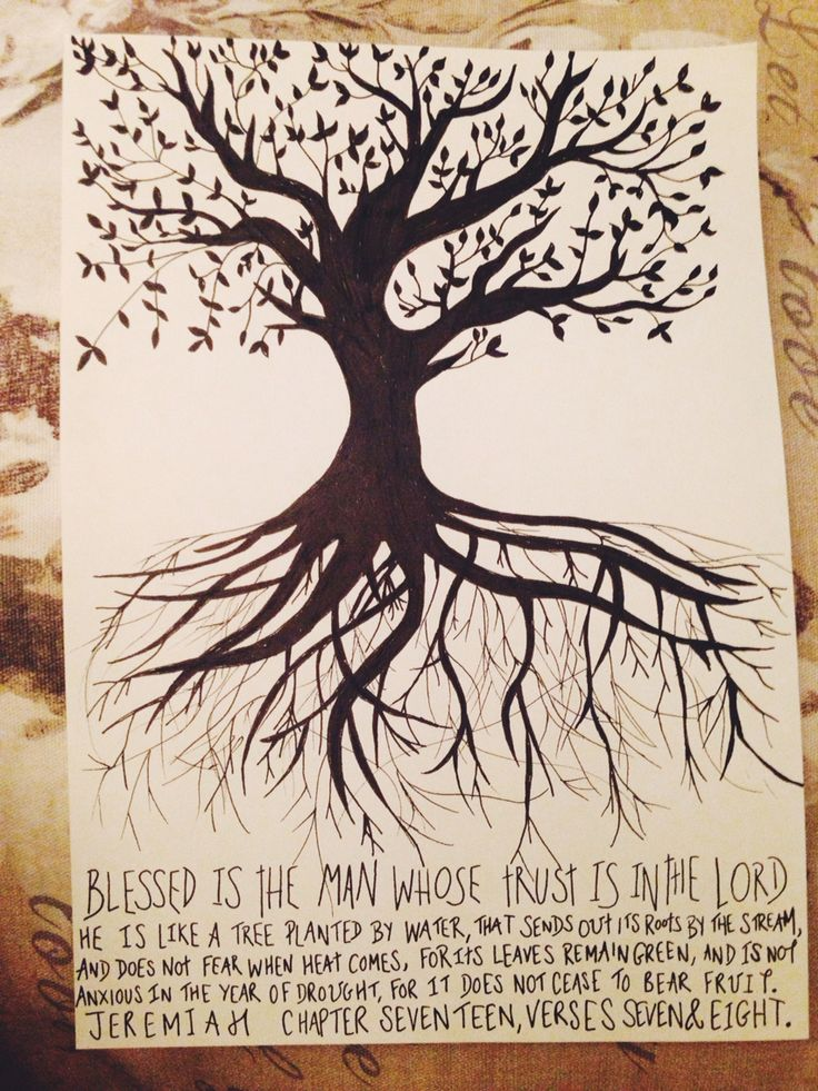 Jeremiah 17 7 Amp 8 Sketch Scripture Art Canvas