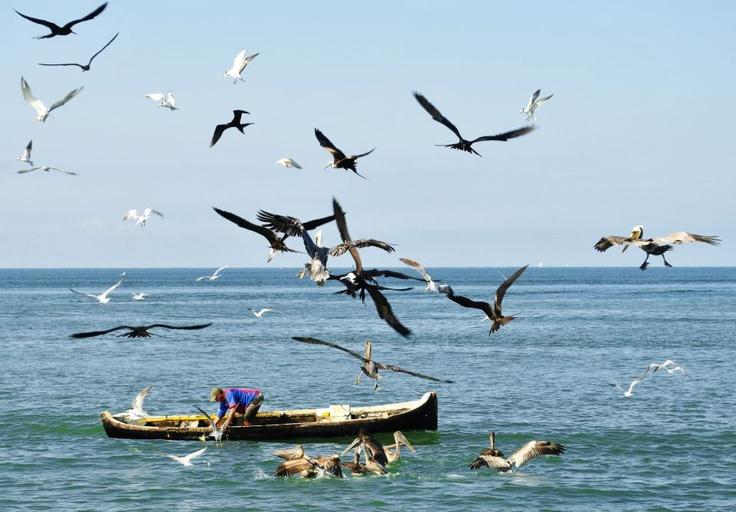 Colombia - Pescador en Tolu, Sucre