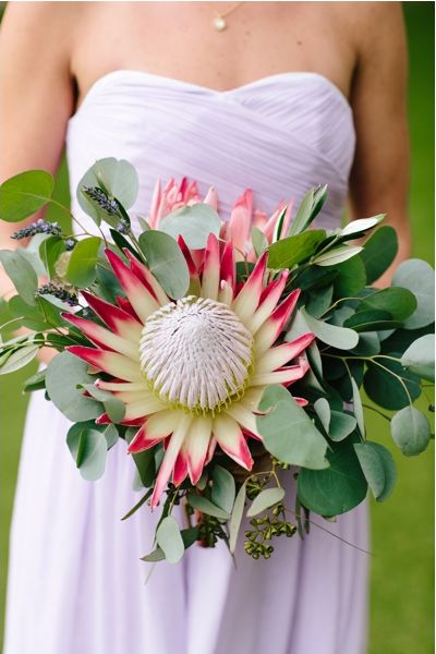 protea bouquet | Heather Kincaid Photographer