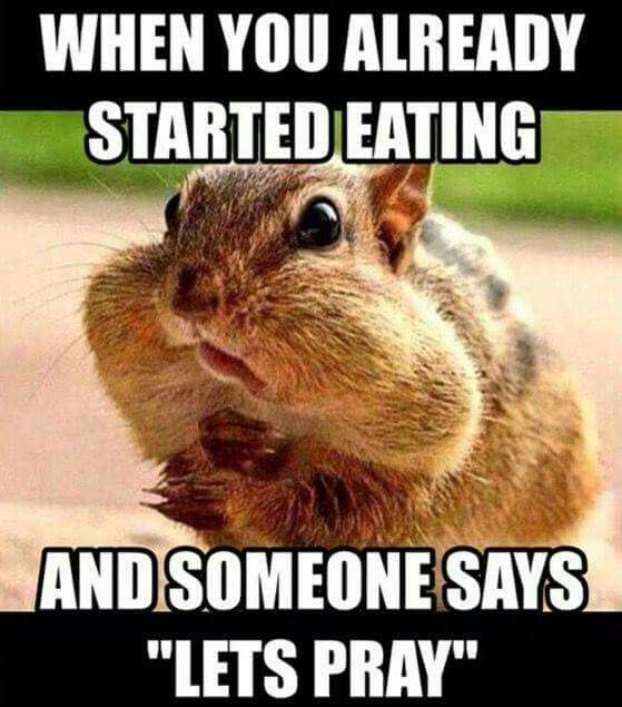 e8c7c01c3e273362b8deb6b9f67265d9 funny christian memes too funny 80 best things that make me lol images on pinterest funny,Edible Arrangements Meme