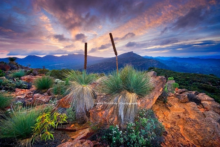 Julie Fletcher Photography - Wilpina Pound Flinders Ranges