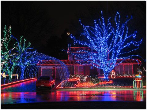 tree wrapped in blue leds and arch over driveway pvc find this pin and more on led christmas lights - Best Led Christmas Tree Lights