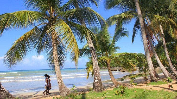 Samanan niemimaalla ei juuri näe massaturismia ja all inclusive -resortteja kuten muualla Dominikaanisessa tasavallassa. Siellä voi rauhassa ihailla palmumaisemia ja hyvällä tuurilla ryhävalaita.