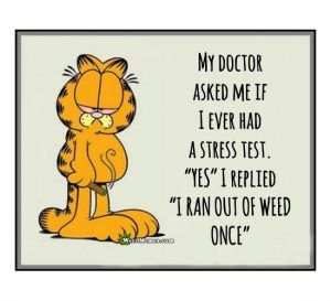 """Garfield Stress Test """"Ran Out Of Weed Once"""""""