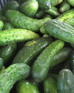 about Cucumbers and Pickles on Pinterest | Recipes for cucumbers ...